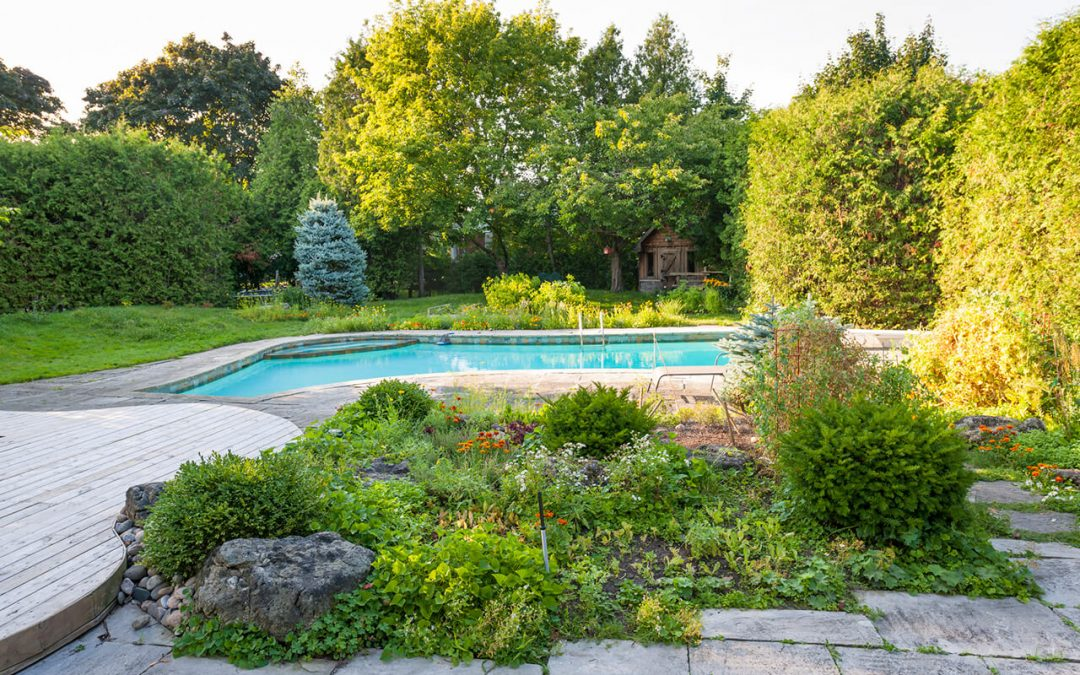 landscaping around your pool